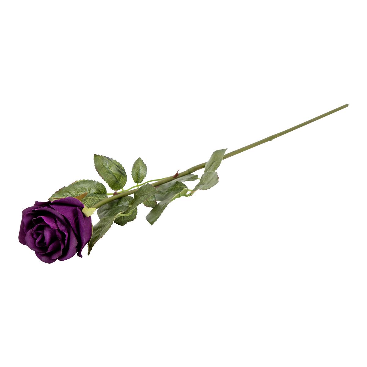 Langstilket rose-BLO1109