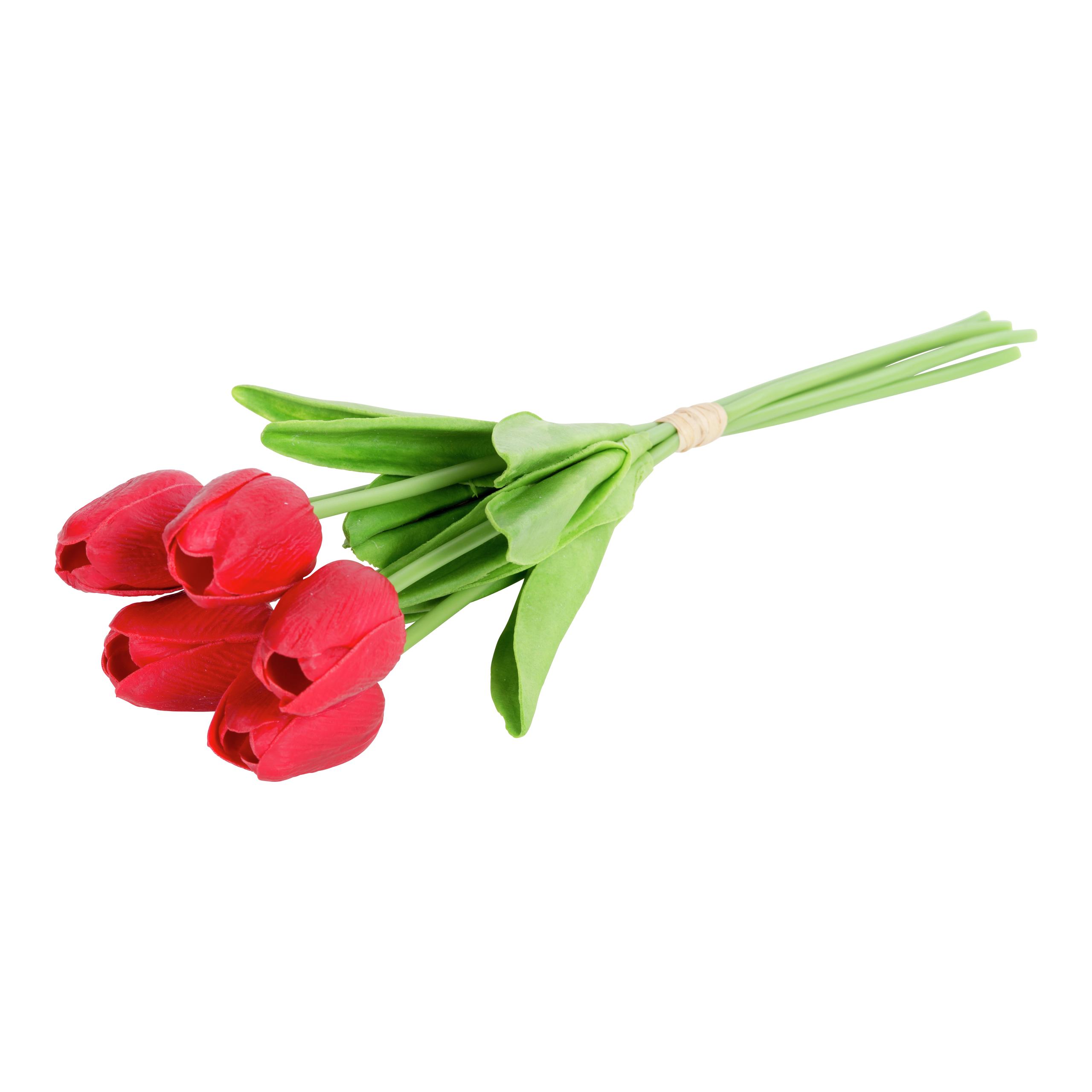 Tulipanbukett 5pk-BLO1110