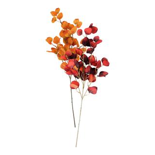 dekoration, gren, vardagsrum, orange, blad