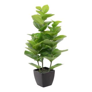 Grønn plante i potte 45cm-BLO1987