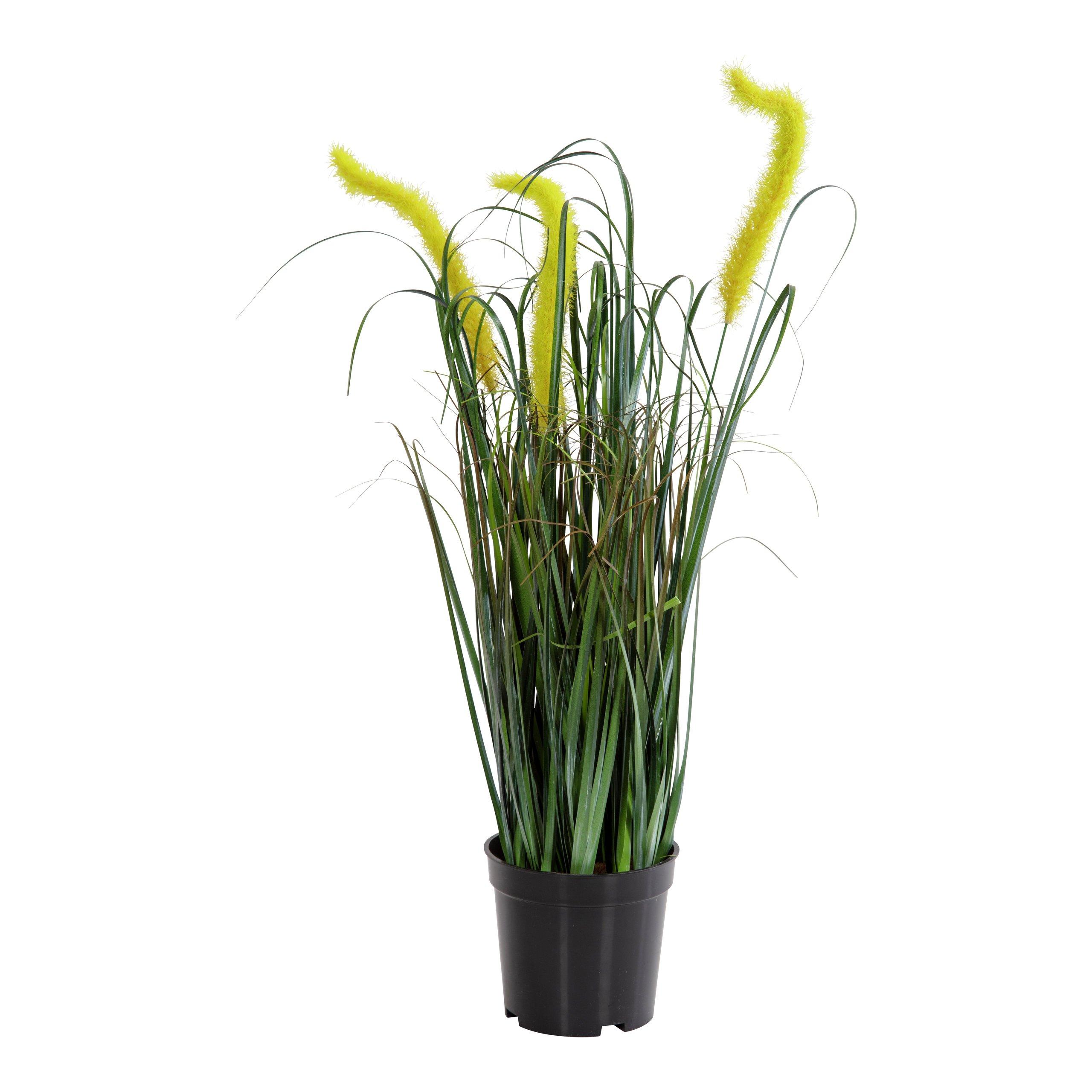 GRESS I POTTE 24CM-BLO2048