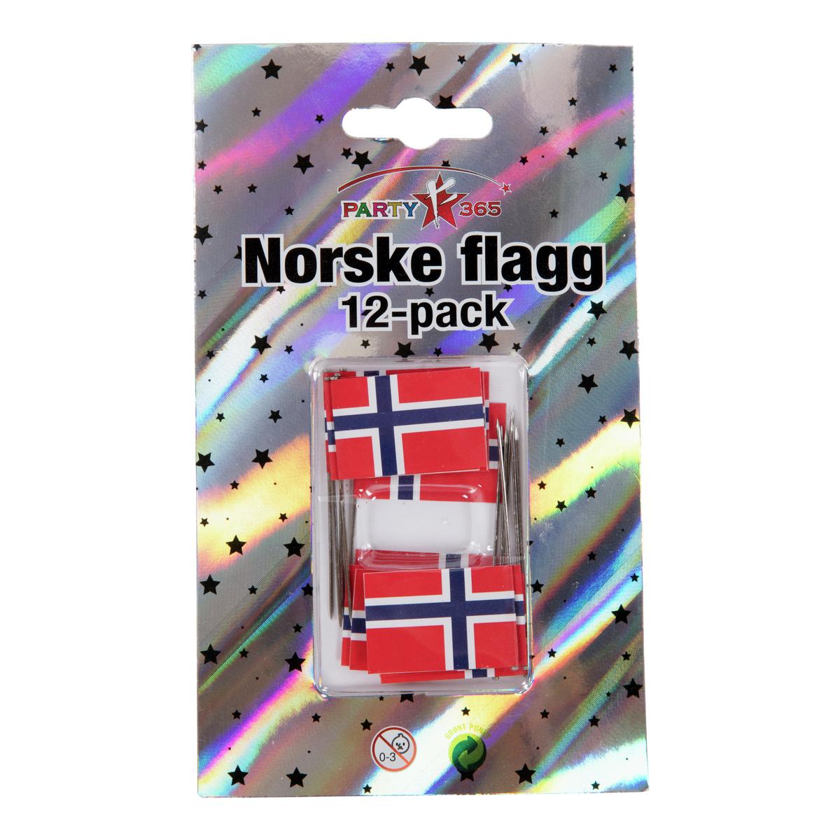 Norsk flagg med nål